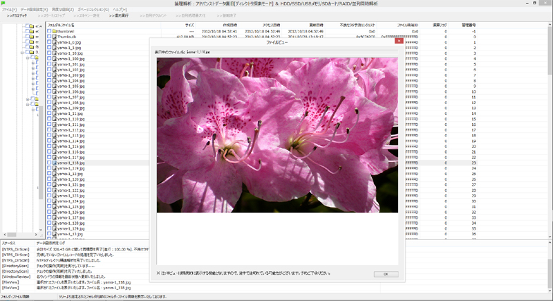 FromHDDtoSSD Ver2.1 ファイルビュー